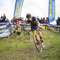 Elite heren Brico Cross Ronse